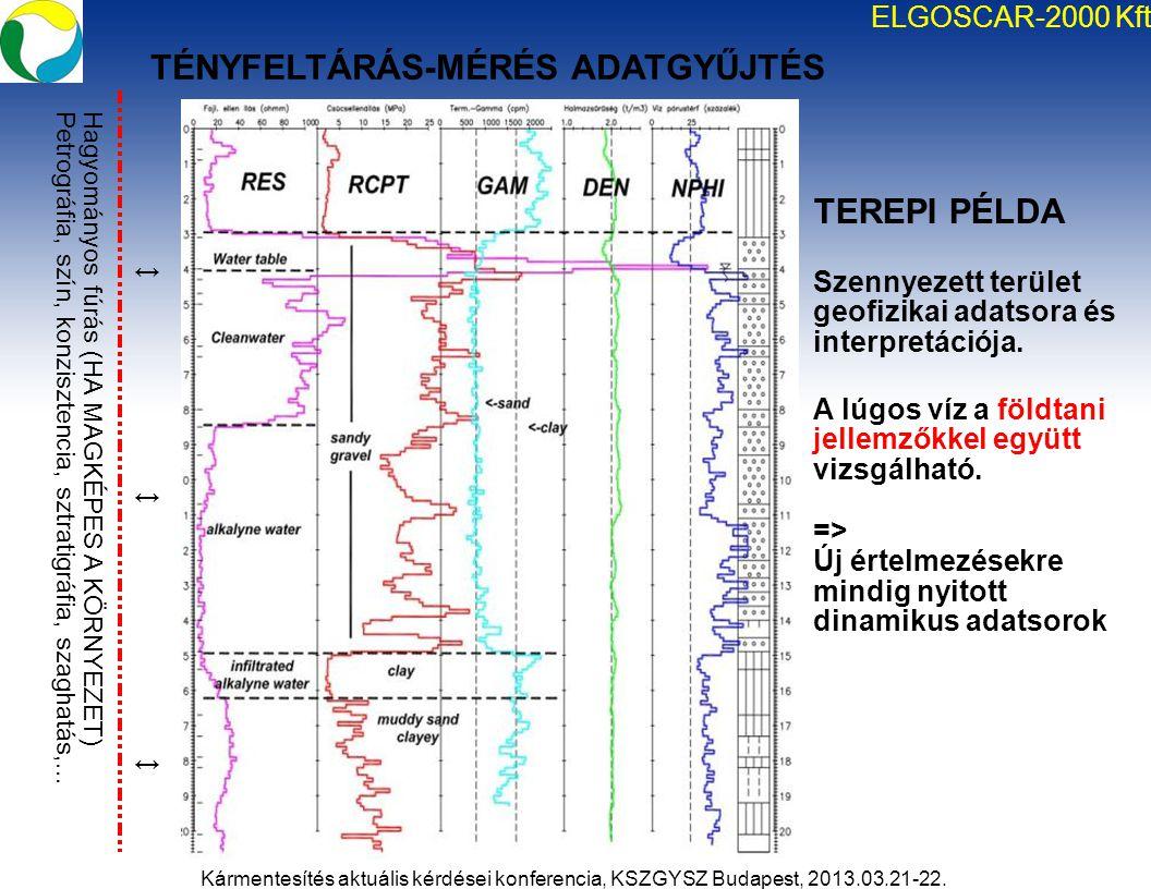 TEREPI PÉLDA Szennyezett terület geofizikai adatsora és interpretációja. A lúgos víz a földtani jellemzőkkel együtt vizsgálható. => Új értelmezésekre