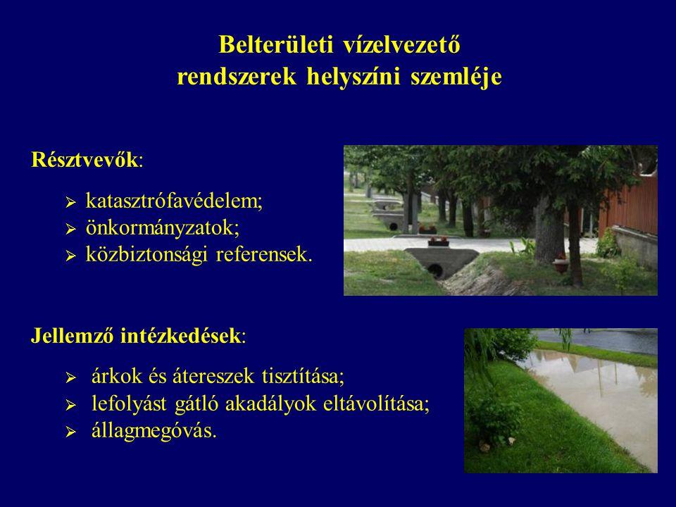 Bevethető erők árvízvédelmi helyzetben