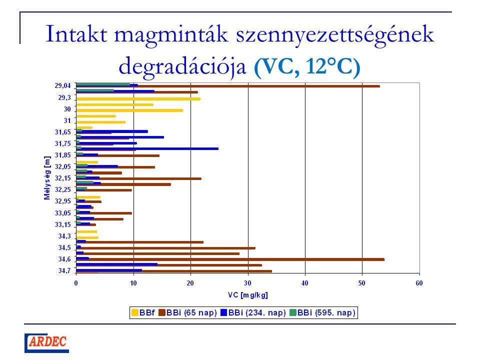 Intakt magminták szennyezettségének degradációja (VC, 12°C)