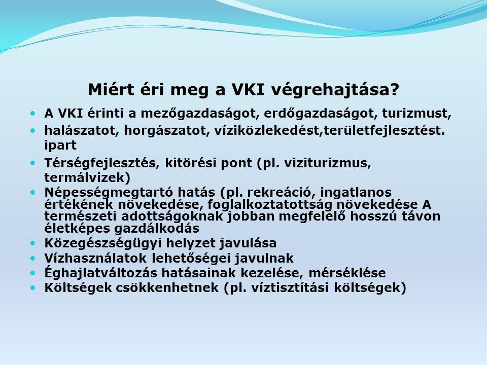 Miért éri meg a VKI végrehajtása.