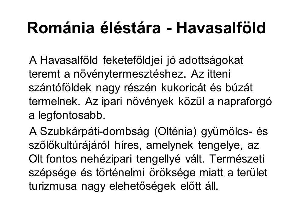Románia éléstára - Havasalföld A Havasalföld feketeföldjei jó adottságokat teremt a növénytermesztéshez.