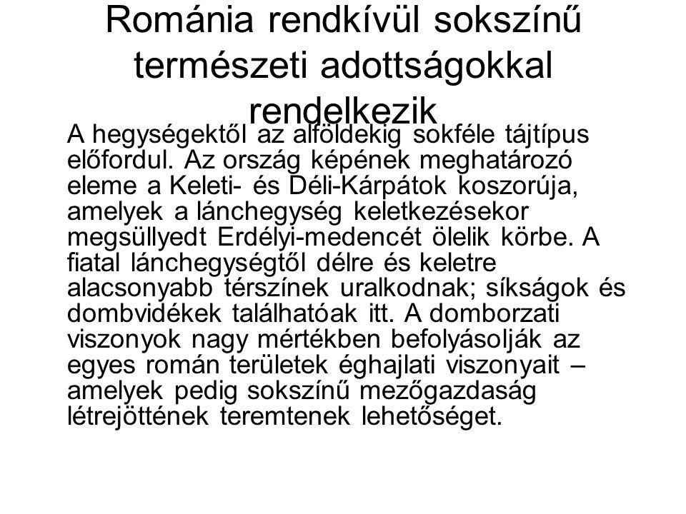 Románia rendkívül sokszínű természeti adottságokkal rendelkezik A hegységektől az alföldekig sokféle tájtípus előfordul. Az ország képének meghatározó