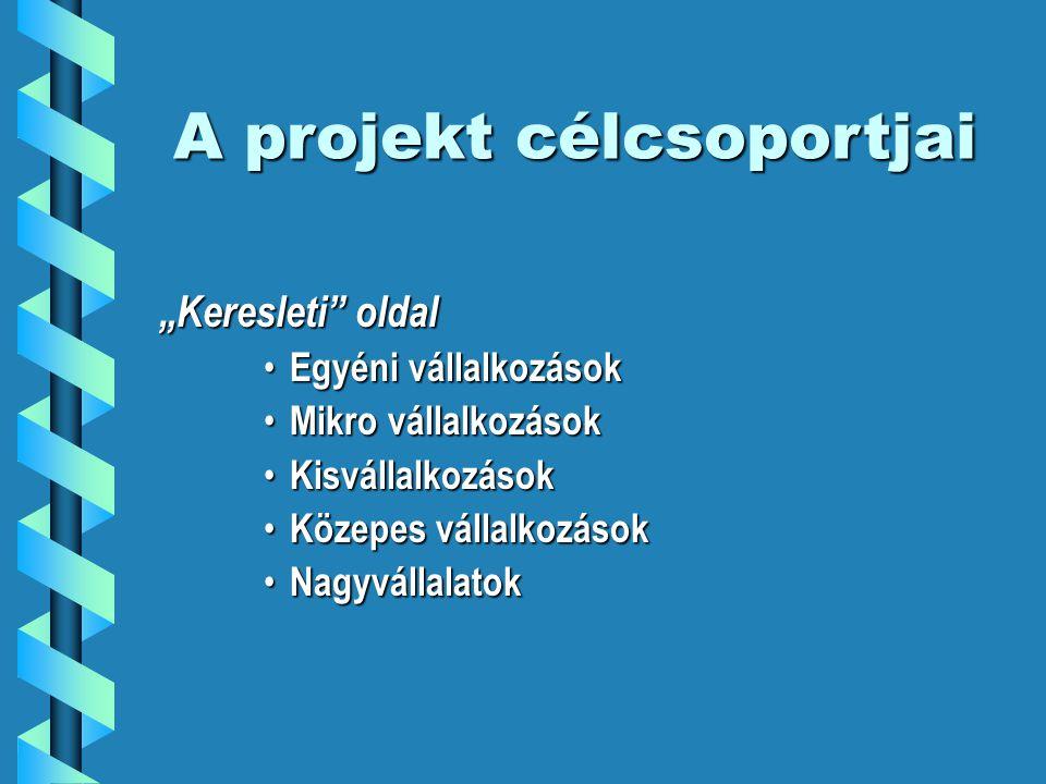 A projekt struktúrája I.