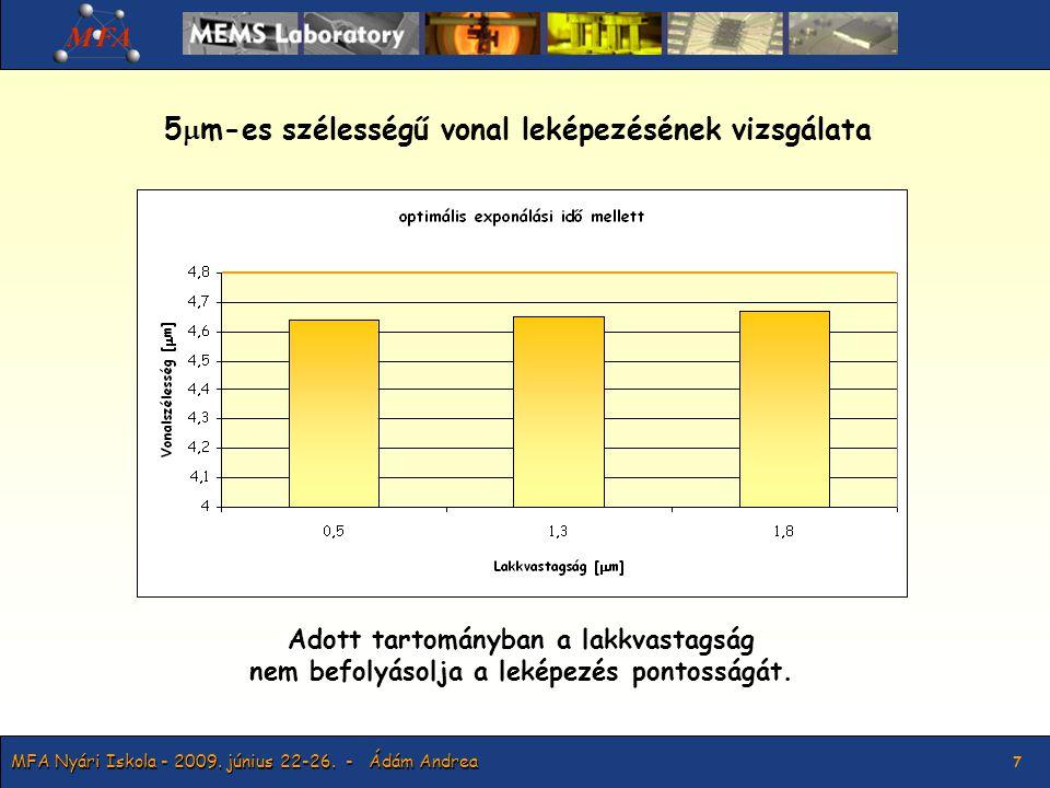 MFA Nyári Iskola - 2009.június 22-26.