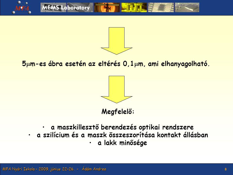 MFA Nyári Iskola - 2009. június 22-26. - Ádám Andrea 9 Hajrá csapat!