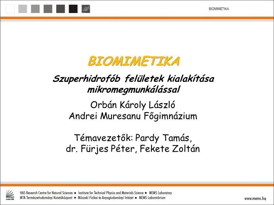 1 BIOMIMETIKA BIOMIMETIKA Szuperhidrofób felületek kialakítása mikromegmunkálással Orbán Károly László Andrei Muresanu Főgimnázium Témavezetők: Pardy