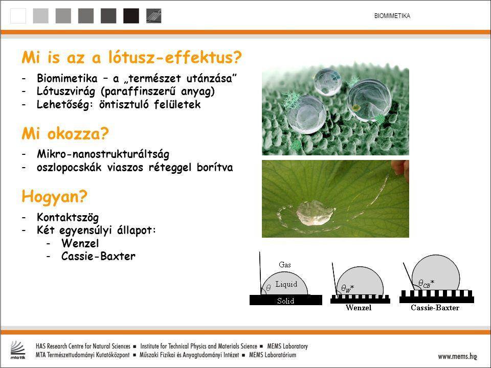 """2 BIOMIMETIKA Mi is az a lótusz-effektus? -Biomimetika – a """"természet utánzása"""" -Lótuszvirág (paraffinszerű anyag) -Lehetőség: öntisztuló felületek Mi"""