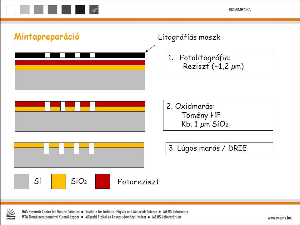 5 BIOMIMETIKA Mintapreparáció Litográfiás maszk SiO 2 Si 1.Fotolitográfia: Reziszt (~1,2 µm) 2. Oxidmarás: Tömény HF Kb. 1 µm SiO 2 3. Lúgos marás / D