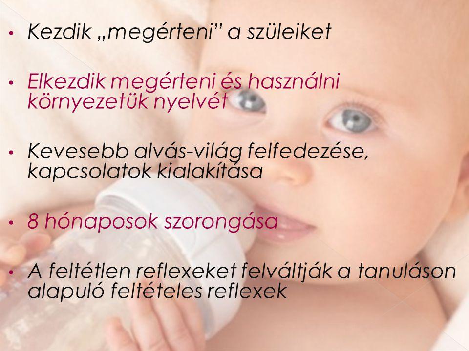 """Kezdik """"megérteni"""" a szüleiket Elkezdik megérteni és használni környezetük nyelvét Kevesebb alvás-világ felfedezése, kapcsolatok kialakítása 8 hónapos"""