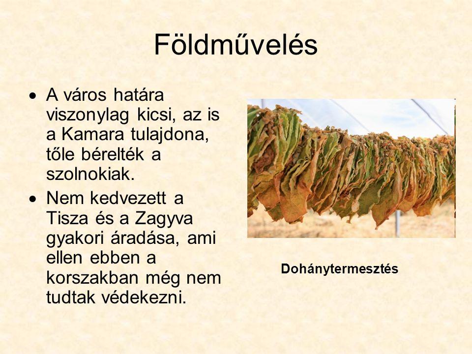 Földművelés  A város határa viszonylag kicsi, az is a Kamara tulajdona, tőle bérelték a szolnokiak.