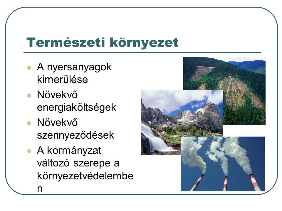 Természeti környezet A nyersanyagok kimerülése Növekvő energiaköltségek Növekvő szennyeződések A kormányzat változó szerepe a környezetvédelembe n