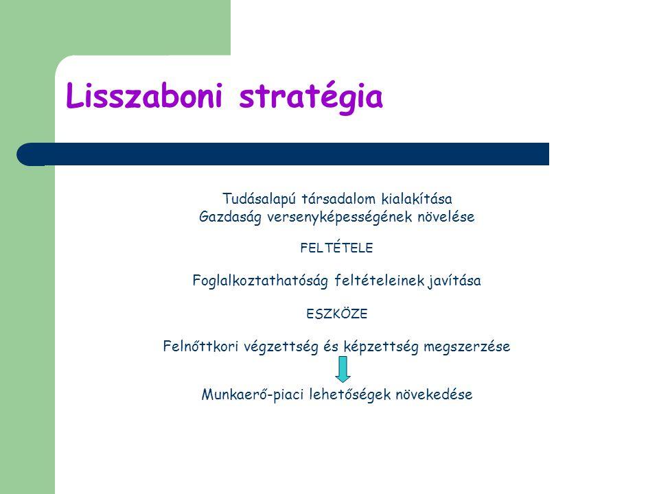 Lisszaboni stratégia Tudásalapú társadalom kialakítása Gazdaság versenyképességének növelése FELTÉTELE Foglalkoztathatóság feltételeinek javítása ESZKÖZE Felnőttkori végzettség és képzettség megszerzése Munkaerő-piaci lehetőségek növekedése