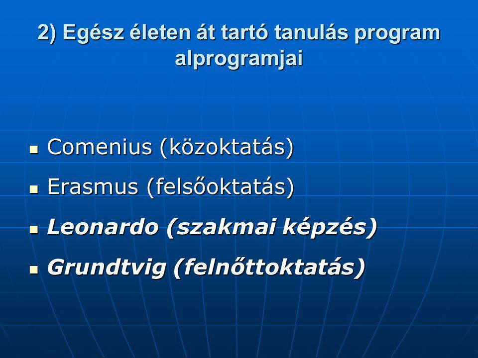2) Egész életen át tartó tanulás program alprogramjai Comenius (közoktatás) Comenius (közoktatás) Erasmus (felsőoktatás) Erasmus (felsőoktatás) Leonardo (szakmai képzés) Leonardo (szakmai képzés) Grundtvig (felnőttoktatás) Grundtvig (felnőttoktatás)