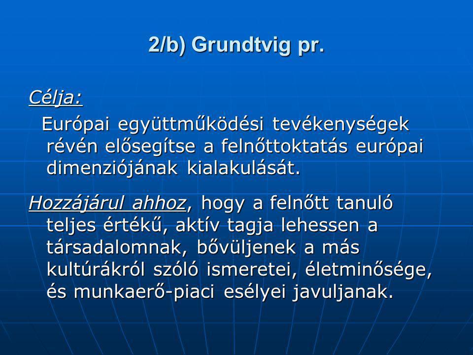 2/b) Grundtvig pr. Célja: Európai együttműködési tevékenységek révén elősegítse a felnőttoktatás európai dimenziójának kialakulását. Európai együttműk