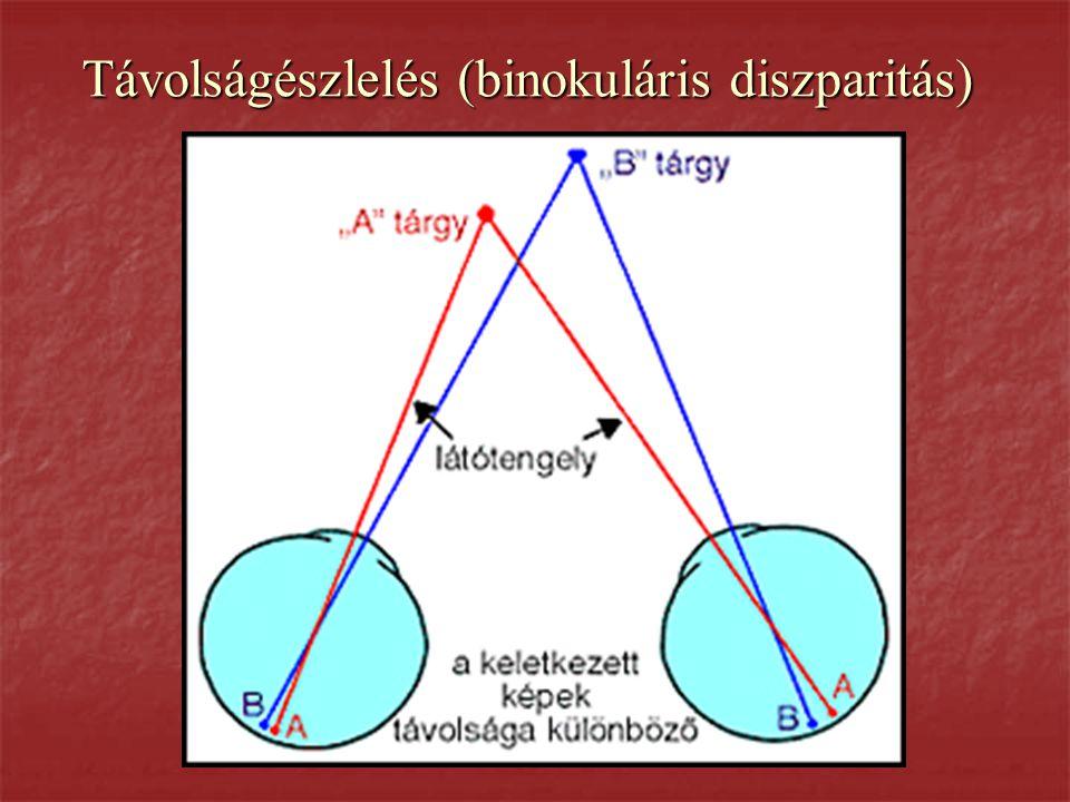 Távolságészlelés (binokuláris diszparitás)