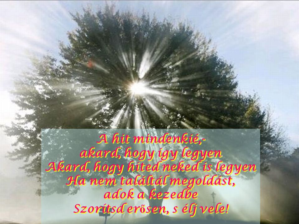 Ha nem változtathatsz, újuljon meg lényed Isten kegyelméb ő l újjászülethetsz Ha nem változtathatsz, újuljon meg lényed Isten kegyelméb ő l újjászülethetsz