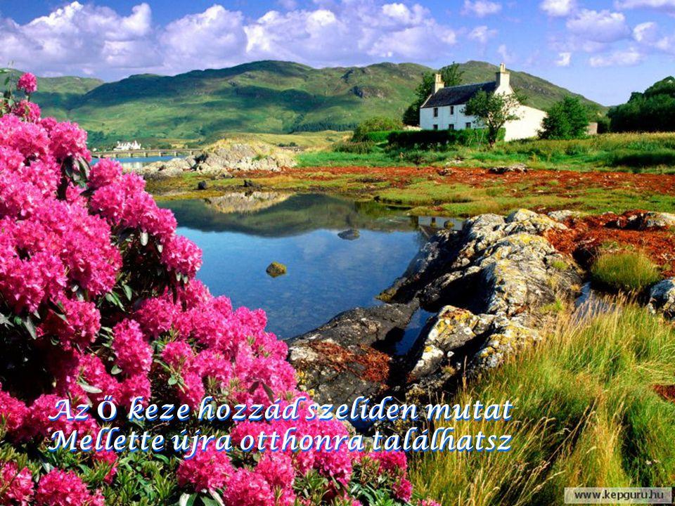 Ha bántanak mások, és te védtelen maradsz Isten kezébe mindig kapaszkodhatsz Ha bántanak mások, és te védtelen maradsz Isten kezébe mindig kapaszkodha