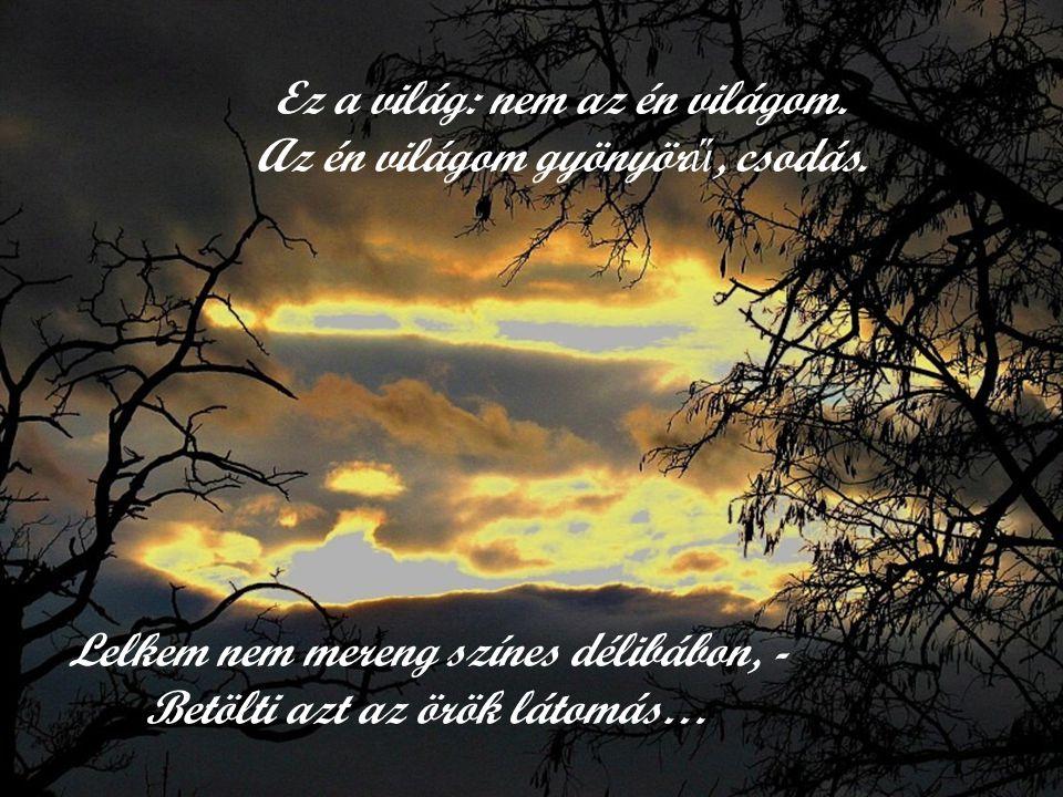 Somogyí J (verse) Az én világom