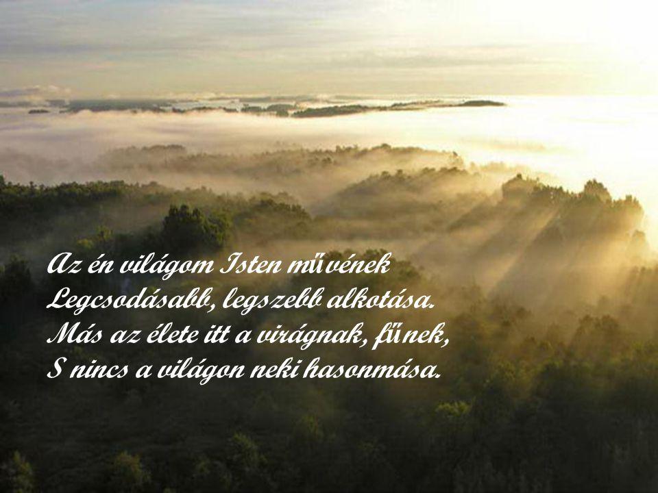 Az én világom Isten m ű vének Legcsodásabb, legszebb alkotása.