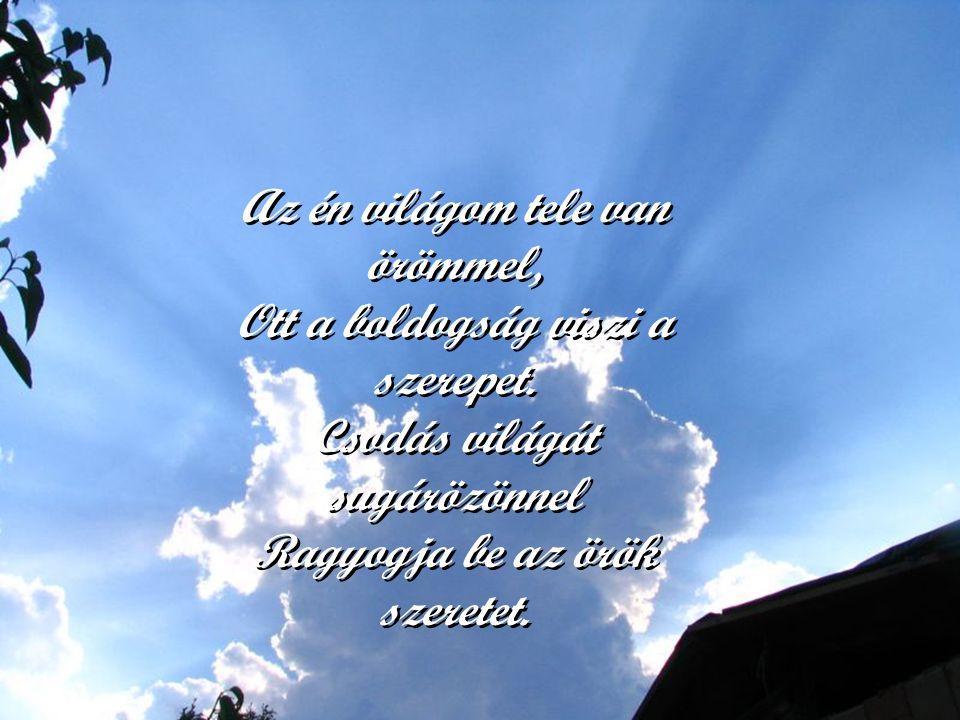 Az én világom Isten m ű vének Legcsodásabb, legszebb alkotása. Más az élete itt a virágnak, f ű nek, S nincs a világon neki hasonmása.