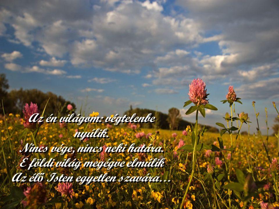 Az én világom tele van örömmel, Ott a boldogság viszi a szerepet. Csodás világát sugárözönnel Ragyogja be az örök szeretet. Az én világom tele van örö