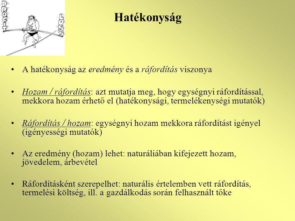 Hatékonyság A hatékonyság az eredmény és a ráfordítás viszonya Hozam / ráfordítás: azt mutatja meg, hogy egységnyi ráfordítással, mekkora hozam érhető