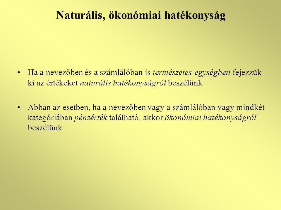 Naturális, ökonómiai hatékonyság Ha a nevezőben és a számlálóban is természetes egységben fejezzük ki az értékeket naturális hatékonyságról beszélünk