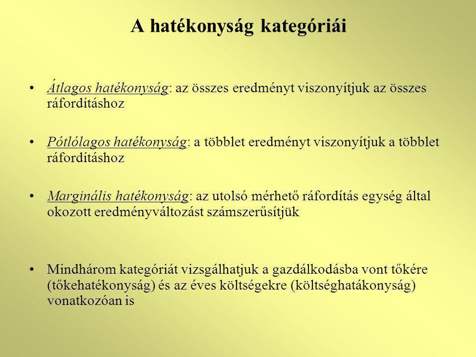 A hatékonyság kategóriái Átlagos hatékonyság: az összes eredményt viszonyítjuk az összes ráfordításhoz Pótlólagos hatékonyság: a többlet eredményt vis