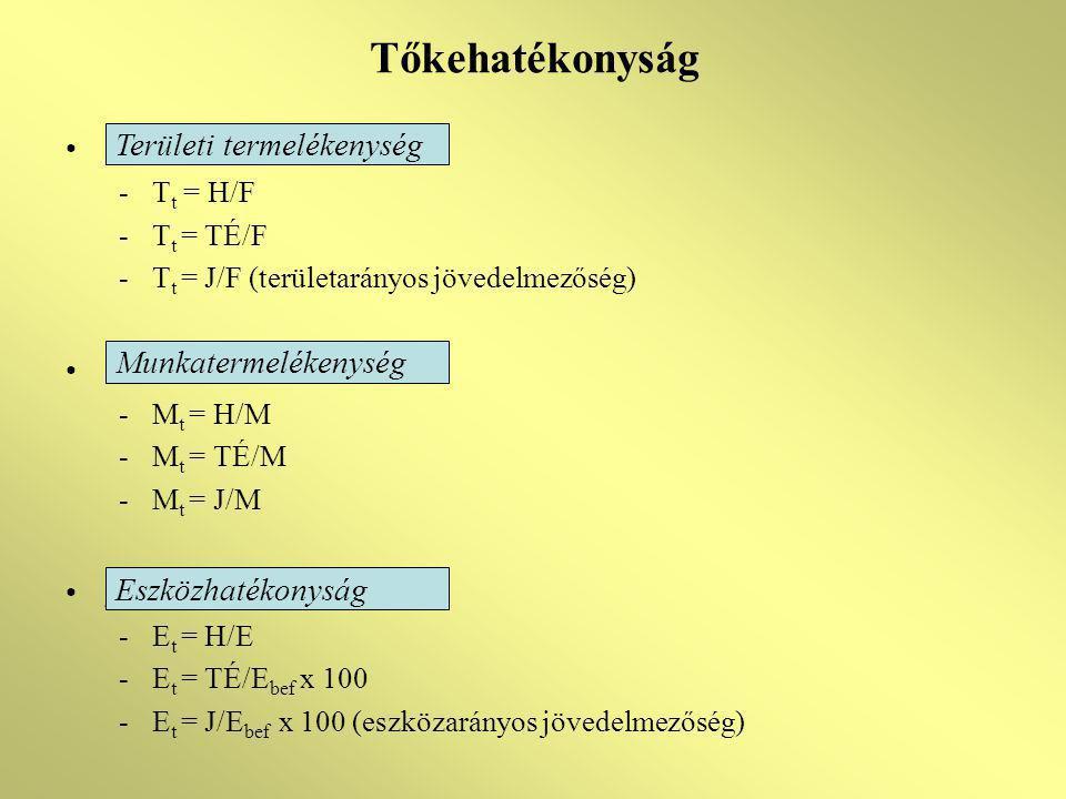 Tőkehatékonyság -T t = H/F -T t = TÉ/F -T t = J/F (területarányos jövedelmezőség) -M t = H/M -M t = TÉ/M -M t = J/M g -E t = H/E -E t = TÉ/E bef x 100