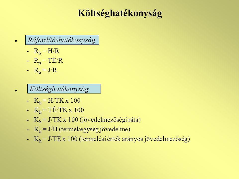 Költséghatékonyság -R h = H/R -R h = TÉ/R -R h = J/R -K h = H/TK x 100 -K h = TÉ/TK x 100 -K h = J/TK x 100 (jövedelmezőségi ráta) -K h = J/H (terméke