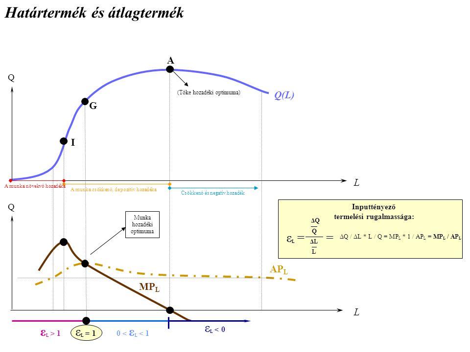 Határtermék és átlagtermék L Q Q(L) A munka növekvő hozadéka A munka csökkenő, de pozitív hozadéka Csökkenő és negatív hozadék L Q I G A MP L AP L Munka hozadéki optimuma (Tőke hozadéki optimuma) Inputtényező termelési rugalmassága: εLεL = ΔQ Q ΔL L = ΔQ / ΔL * L / Q = MP L * 1 / AP L = MP L / AP L ε L > 1 0 < ε L < 1 ε L < 0 ε L = 1