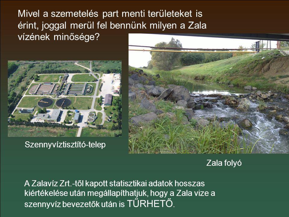 Mivel a szemetelés part menti területeket is érint, joggal merül fel bennünk milyen a Zala vízének minősége.