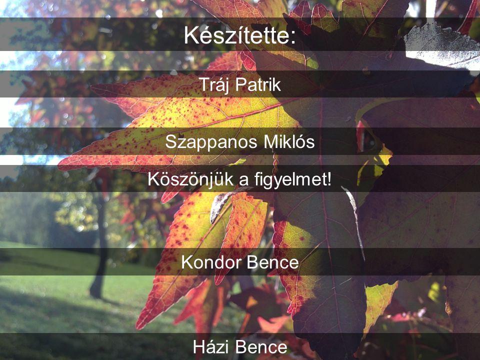 Készítette: Tráj Patrik Szappanos Miklós Kondor Bence Házi Bence Köszönjük a figyelmet!