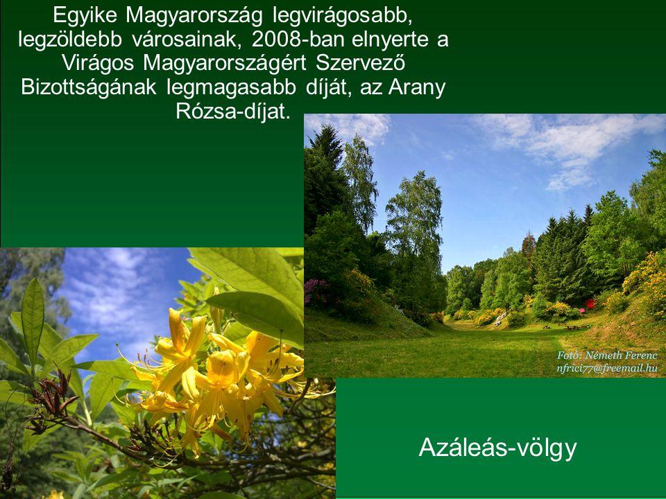 Egyike Magyarország legvirágosabb, legzöldebb városainak, 2008-ban elnyerte a Virágos Magyarországért Szervező Bizottságának legmagasabb díját, az Arany Rózsa-díjat.