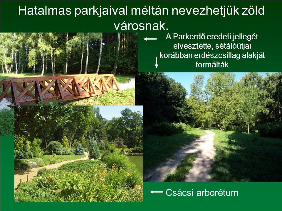 A Parkerdő eredeti jellegét elvesztette, sétálóútjai korábban erdészcsillag alakját formálták Hatalmas parkjaival méltán nevezhetjük zöld városnak.