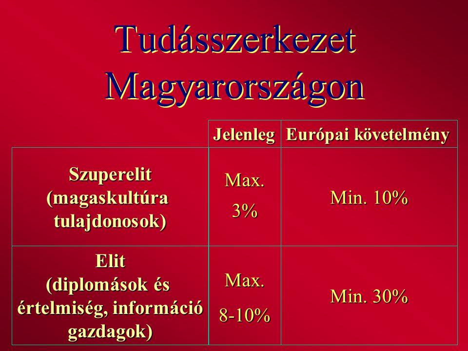 Tudásszerkezet Magyarországon Szuperelit(magaskultúratulajdonosok) Európai követelmény Jelenleg Max.3% Min. 10% Elit (diplomások és értelmiség, inform