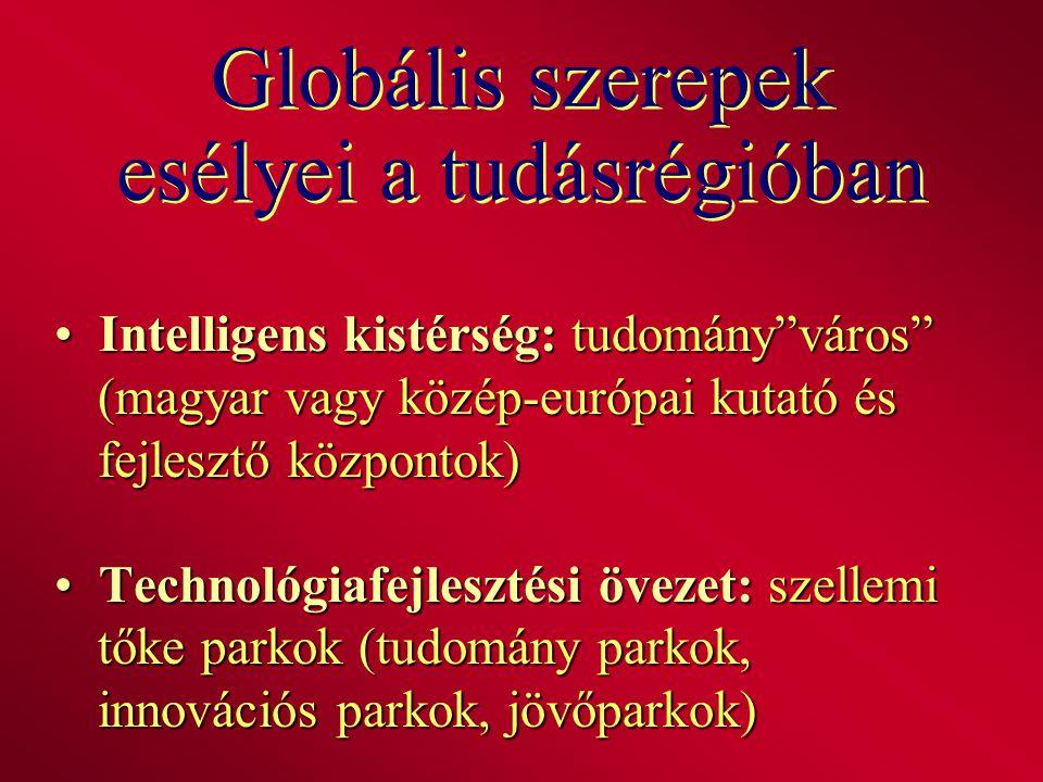 """Globális szerepek esélyei a tudásrégióban Intelligens kistérség: tudomány""""város"""" (magyar vagy közép-európai kutató és fejlesztő központok) Intelligens"""