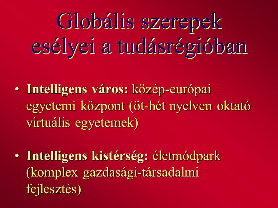 Globális szerepek esélyei a tudásrégióban Intelligens város: közép-európai egyetemi központ (öt-hét nyelven oktató virtuális egyetemek) Intelligens vá