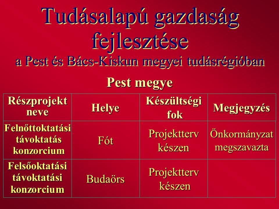 Tudásalapú gazdaság fejlesztése a Pest és Bács-Kiskun megyei tudásrégióban Pest megye RészprojektneveHelyeKészültségi fok fokMegjegyzés Felnőttoktatás