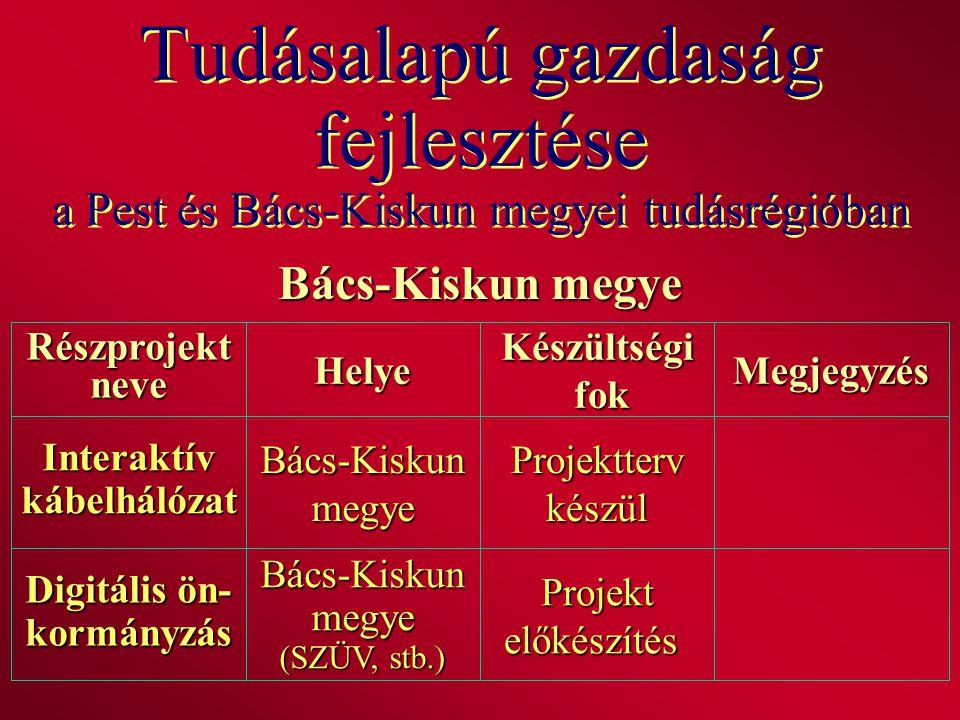 Tudásalapú gazdaság fejlesztése a Pest és Bács-Kiskun megyei tudásrégióban Bács-Kiskun megye RészprojektneveHelyeKészültségi fok fokMegjegyzés Interak