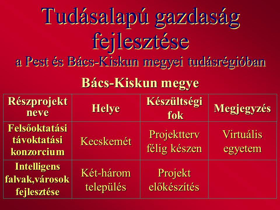 Tudásalapú gazdaság fejlesztése a Pest és Bács-Kiskun megyei tudásrégióban Bács-Kiskun megye RészprojektneveHelyeKészültségi fok fokMegjegyzés Intelli