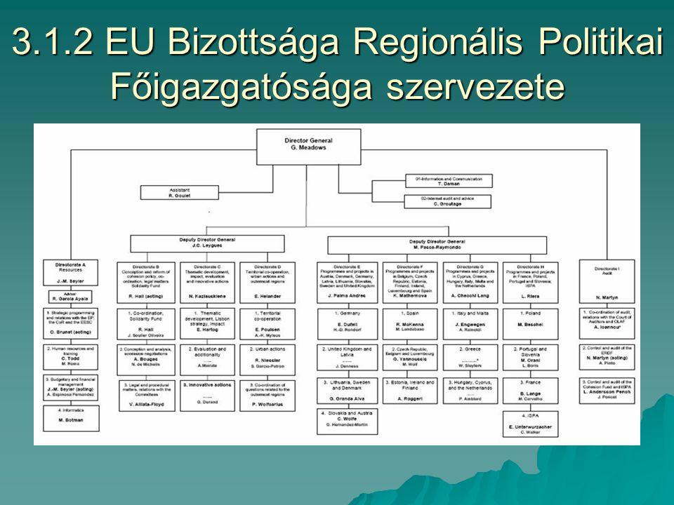 3.1.1 Az EU intézményrendszere és feladatai FunkcióSzervFeladatKépviselet EU-n kívül Eu-i Tanács Döntéshozatal, nem jogi Kormány v.
