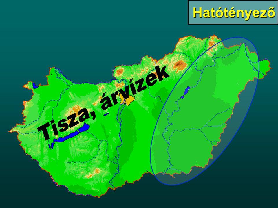 Tiszabecs: 744 fkm Tiszasziget: 167 fkm Tiszalök és Kisköre 518 fkm & 403 fkm Hatásterület II.