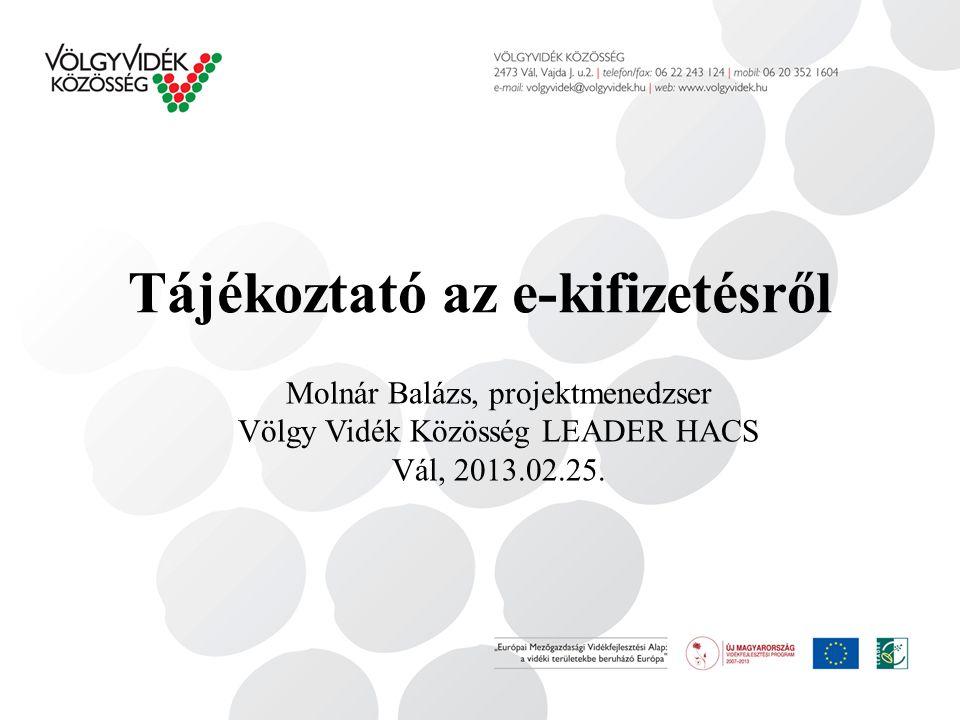 Tájékoztató az e-kifizetésről Molnár Balázs, projektmenedzser Völgy Vidék Közösség LEADER HACS Vál, 2013.02.25.