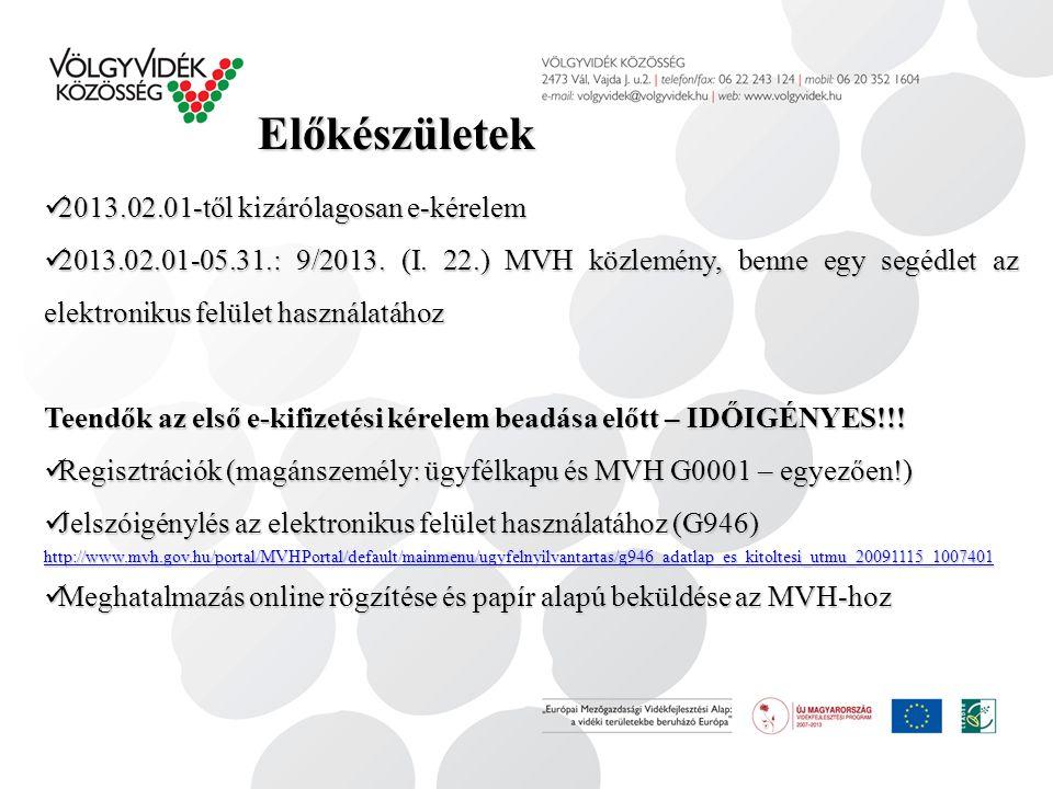 Előkészületek 2013.02.01-től kizárólagosan e-kérelem 2013.02.01-től kizárólagosan e-kérelem 2013.02.01-05.31.: 9/2013. (I. 22.) MVH közlemény, benne e
