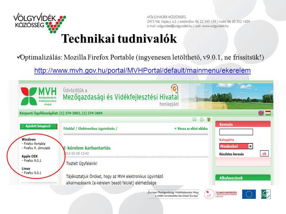 Kérelem kitöltése, tartalom 1) Kiválasztás MVH honlapon, majd az elektronikus felületen: Elektronikus ügyintézés/e-kifizetés/ügyfélkapus bejelentkezés/2) képviselt beállítása/3) III.