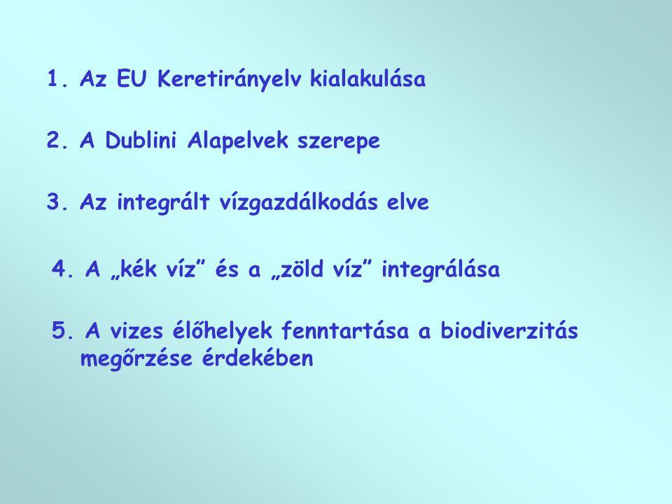 1.Az EU Keretirányelv kialakulása 2. A Dublini Alapelvek szerepe 3.