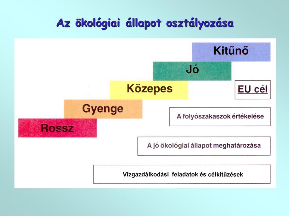 """4. A """"kék víz és a """"zöld víz integrálása"""