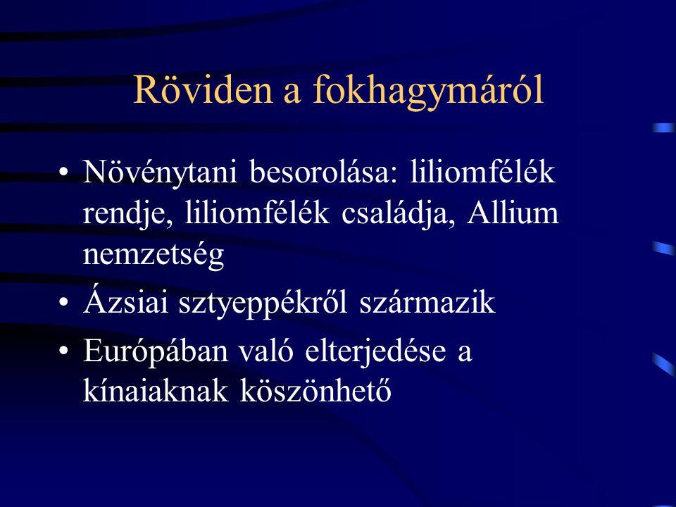 Röviden a fokhagymáról Növénytani besorolása: liliomfélék rendje, liliomfélék családja, Allium nemzetség Ázsiai sztyeppékről származik Európában való