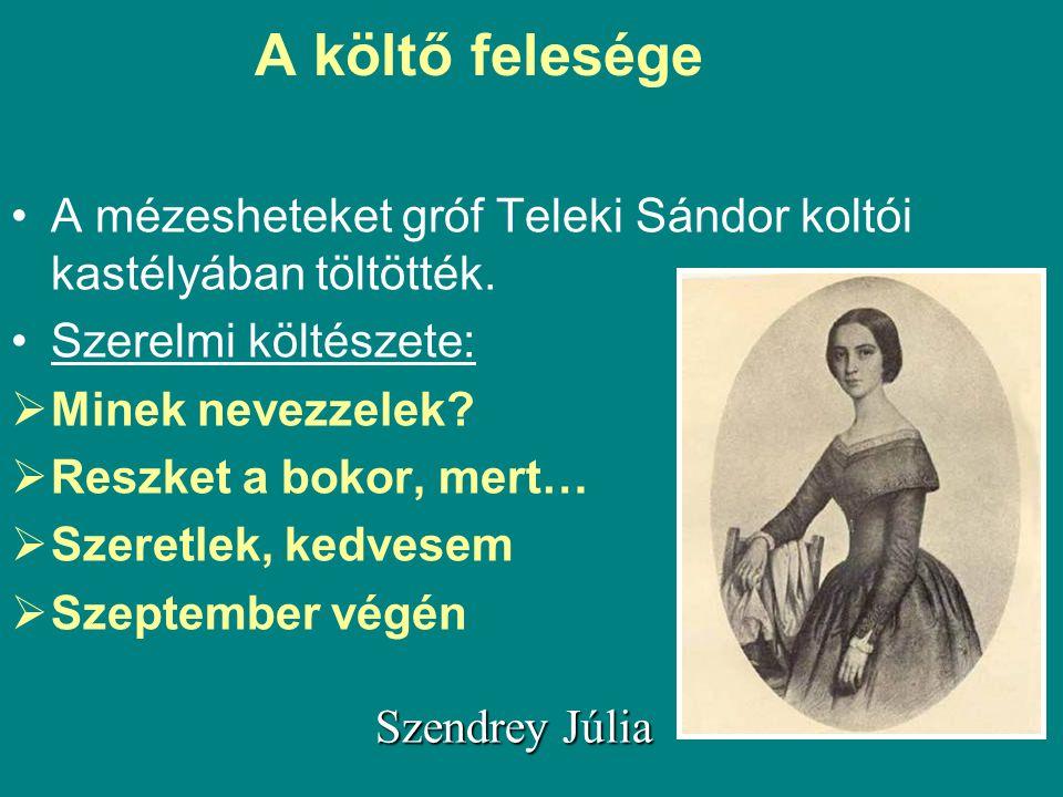 A mézesheteket gróf Teleki Sándor koltói kastélyában töltötték. Szerelmi költészete:  Minek nevezzelek?  Reszket a bokor, mert…  Szeretlek, kedvese